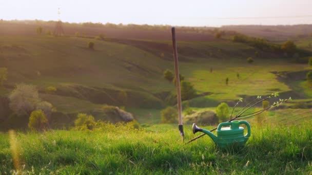 Idylistic krajina - zelené kopce s Krtonožka tráva a stromy. V popředí je strom sazenice, zalévání a lopaty. Koncept - zahradnictví, dobrovolnické práce, péče o životní prostředí
