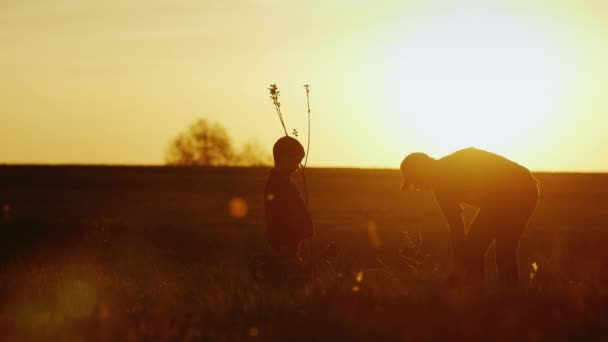 A father with a small son together plant a tree. At sunset, beautiful silhouettes. Concept - a new life, a strong family and family values