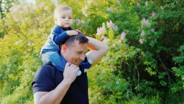 Kaukázusi boldog édesapja egy kisgyermek fia hordozza a vállán. Boldog együtt. Lassú mozgás Steadicamnél videóinak