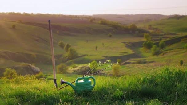 Pan shot: Idylistic krajina - zelené kopce s Krtonožka tráva a stromy. Koncept - zahradnictví, dobrovolnické práce, péče o životní prostředí