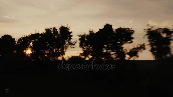 Siluety stromů prosvítat Slunce. Pohled z okna jedoucího auta