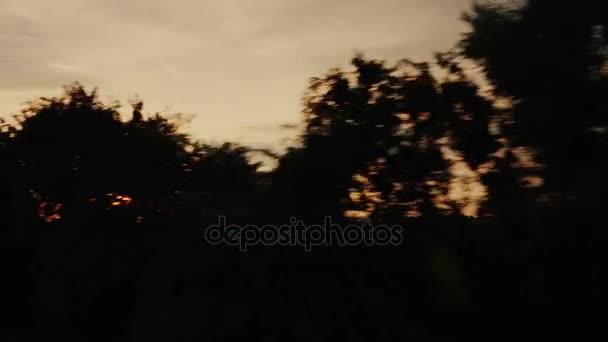Cestujte po malebné krajině při západu slunce. Siluety stromů, nastavení slunce svítí