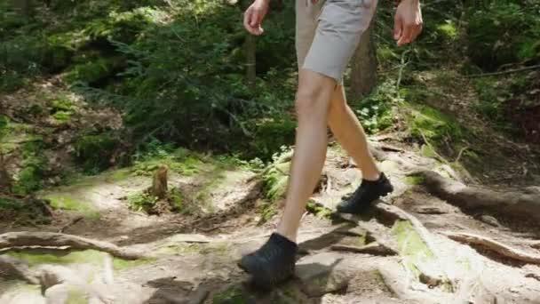 Die Beine des Mannes Touristen gehen entlang den Waldweg entlang der Wurzeln und Steinen. Abenteuer und einen aktiven Lebensstil. Steadicam folgen Schuss