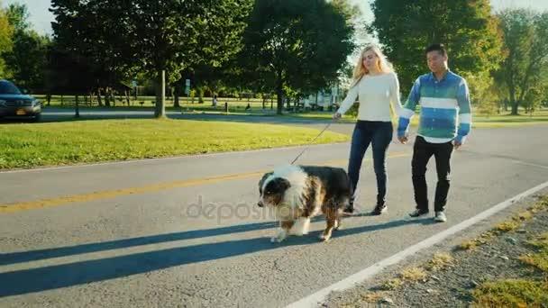 Pár jsou procházky v parku se psem