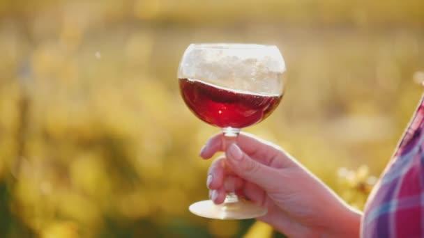 Eine weibliche Hand hält bei Sonnenuntergang ein Glas Wein mit Rotwein in der Hand. Weinverkostungskonzept. Zeitlupenvideo