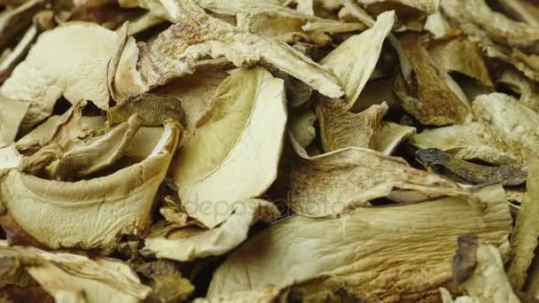 Dried white mushrooms. Studio video