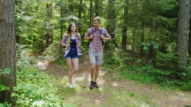 Vonzó a fiatal pár séta az erdőben. Túrázáshoz és az aktív életmód. Steadicamnél lövés