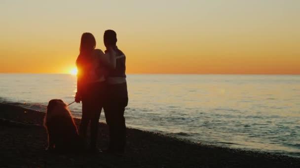 Chodit se svým oblíbeným psem. Mladý pár má rád zdání slunce nad mořem, vedle jejich mazlíček