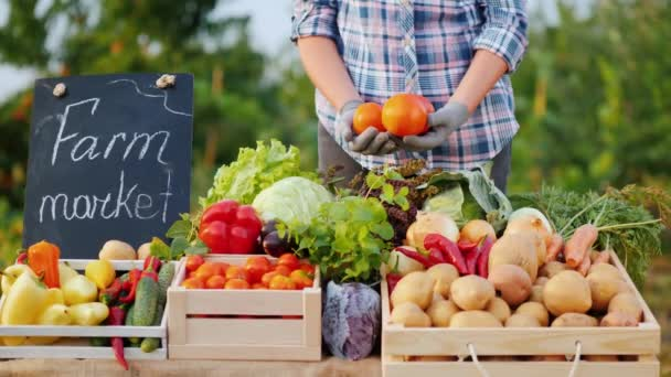 Prodávající drží v rukou několik rajčat, stojí u pultu na trhu se zeleninou