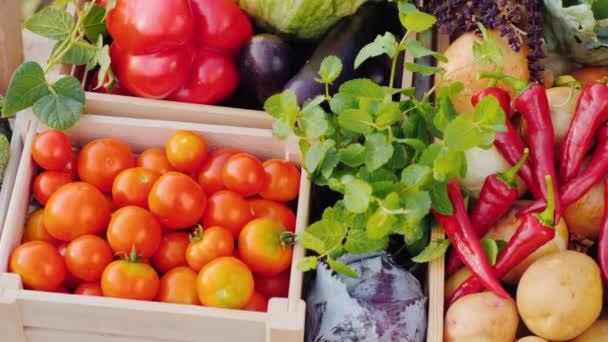 Pan záběr na pult s čerstvou zeleninou na farmářském trhu