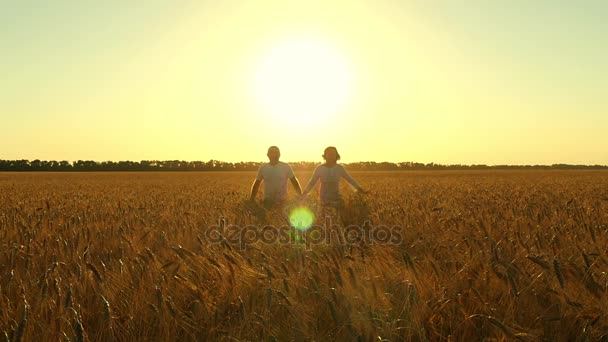 Happy young couple running through a field of wheat. Young man and woman hold hands. High-speed camera, slow motion, sunset light, low viewing angle
