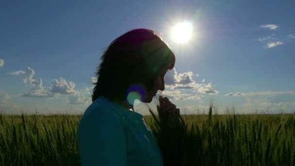 Silhouette of a young woman hugging wheat spikes in a slow motion. Cultivation of wheat.