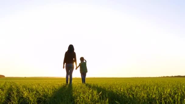 Šťastná rodina: matka a dítě procházejí zeleným polem v paprscích slunce při západu slunce. Malý chlapec ukazuje k obloze.