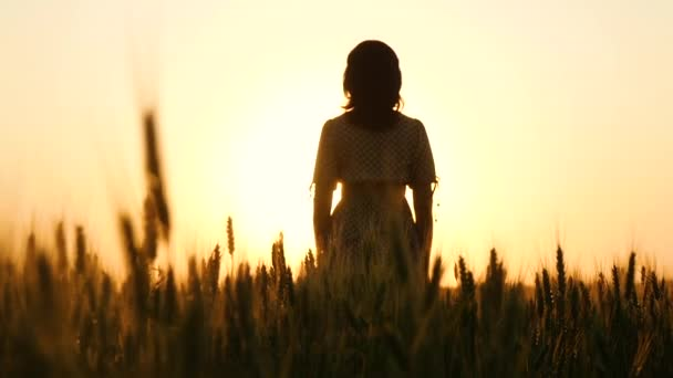 The camera slowly rises between the golden ears of wheat. The girl stands in the sun at sunset and raises her hands.