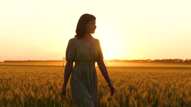 ein schönes Mädchen in einem Kleid geht durch ein Weizenfeld, berührt die goldenen Ähren des Weizens und genießt die Natur.
