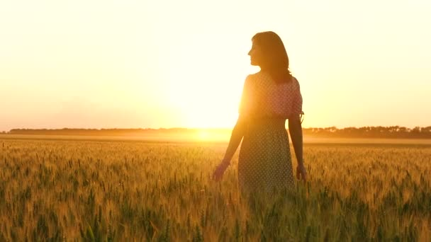 A girl in a dress is walking through a wheat field, touching the spikelets of wheat, enjoying nature and a beautiful sunset.