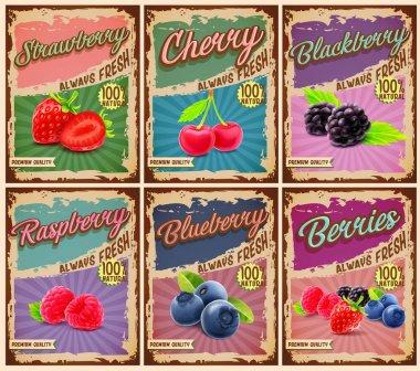 set of berries vintage banner
