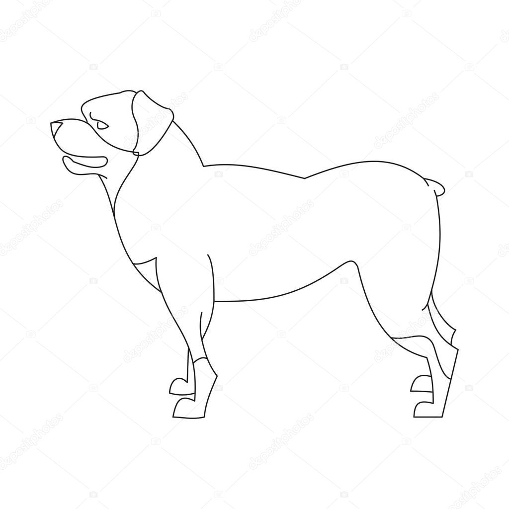Cao Rottweiler Linear Vetores De Stock C Wonderstasy 128965026