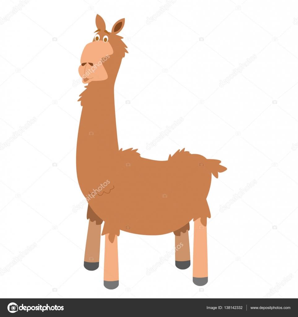 cute cartoon llama vector illustration — stock vector © asantosg
