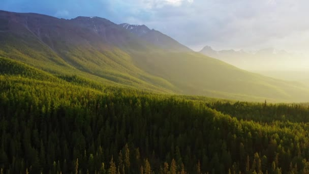 Aerial Flight Over Mist Forrest Sunset Colorful Autumn Trees Golden Hour Sunset Colors Epic Glory Inspiration Hiking And Tourism Concept. Altay Mountain, Russia