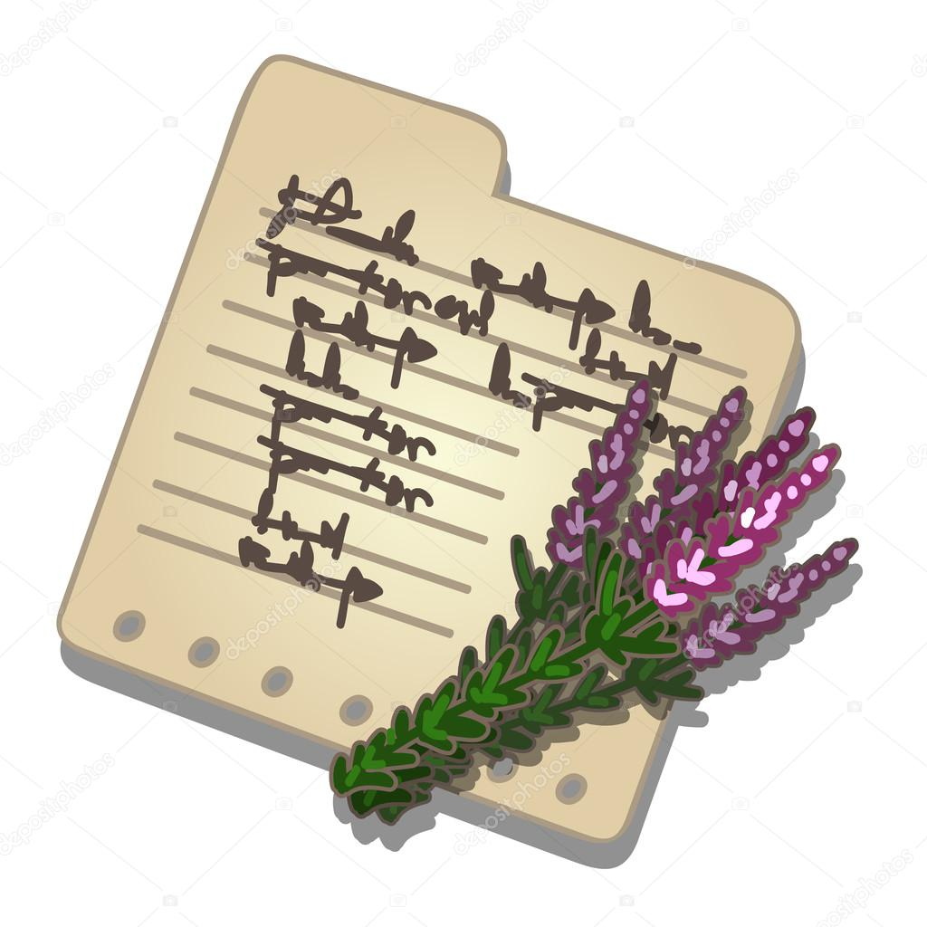 Bouquet lavender and note with recipe. Vector