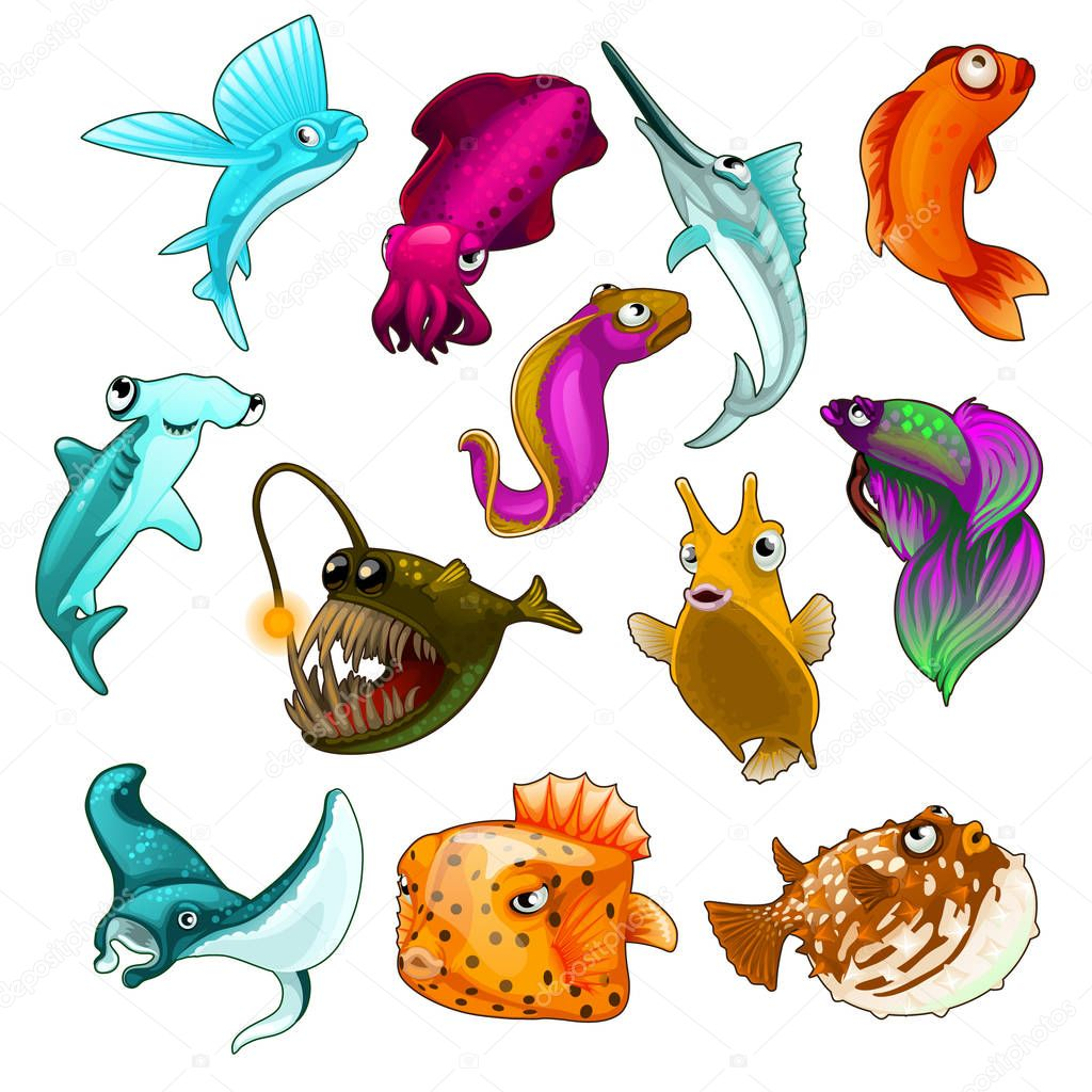 Vector collection of tropical fishes isolated