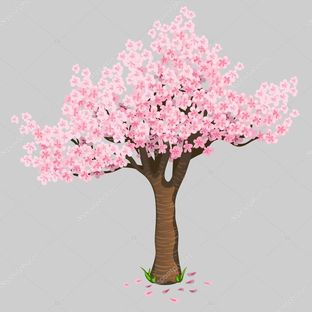 Красивое дерево вишни расцветает. Нежный Сакура ... Черное Дерево На Белом Фоне