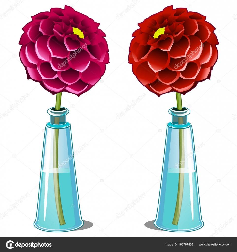 Rose Et Rouge Dahlia Fleur Dans Un Vase De Verre Fleur De Vecteur