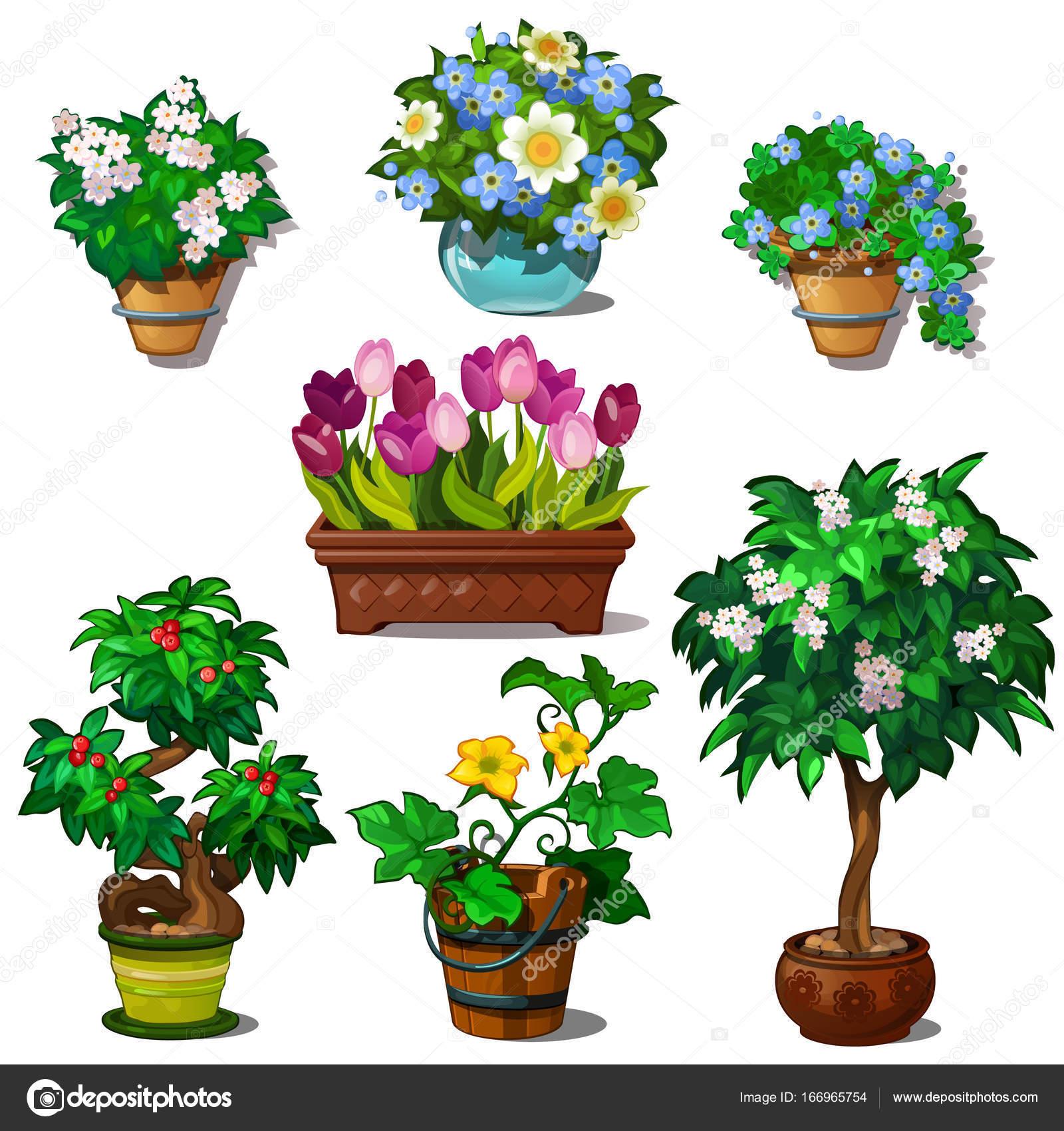 Dibujos animados plantas y flores siete im genes de for Arboles plantas y flores