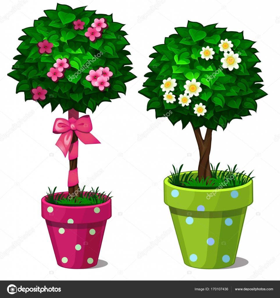 Two Decorative Bonsai Tree With Flowers In Green And Pink Pots