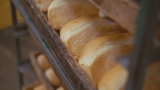 Close up of many fresh loafs of wheat bread 4K