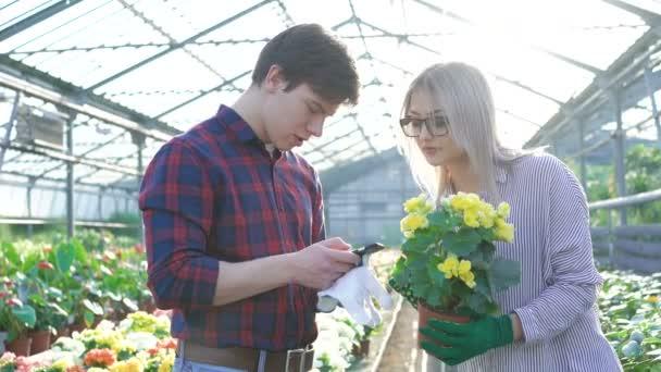 Gardeners checking flowers and using smartphone 4K