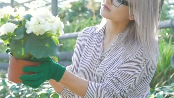 Female gardener checking flowerpots and smiling in gardenhouse Slowly