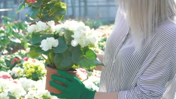 Female gardener holding flowerpots and smiling in gardenhouse Slowly