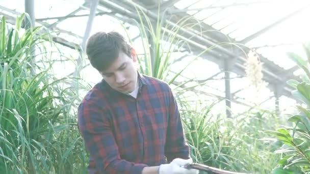 Gardener watering flowers and trees in gardenhouse