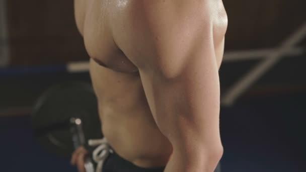 Mladý hygroskopické hezký boxer školení s činka v posilovně. Pomalu