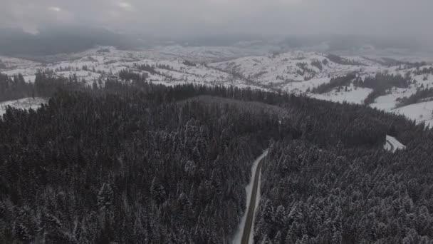 Silnice v zimním lese s řízením auta. Letecký panoramatický pohled. 4k
