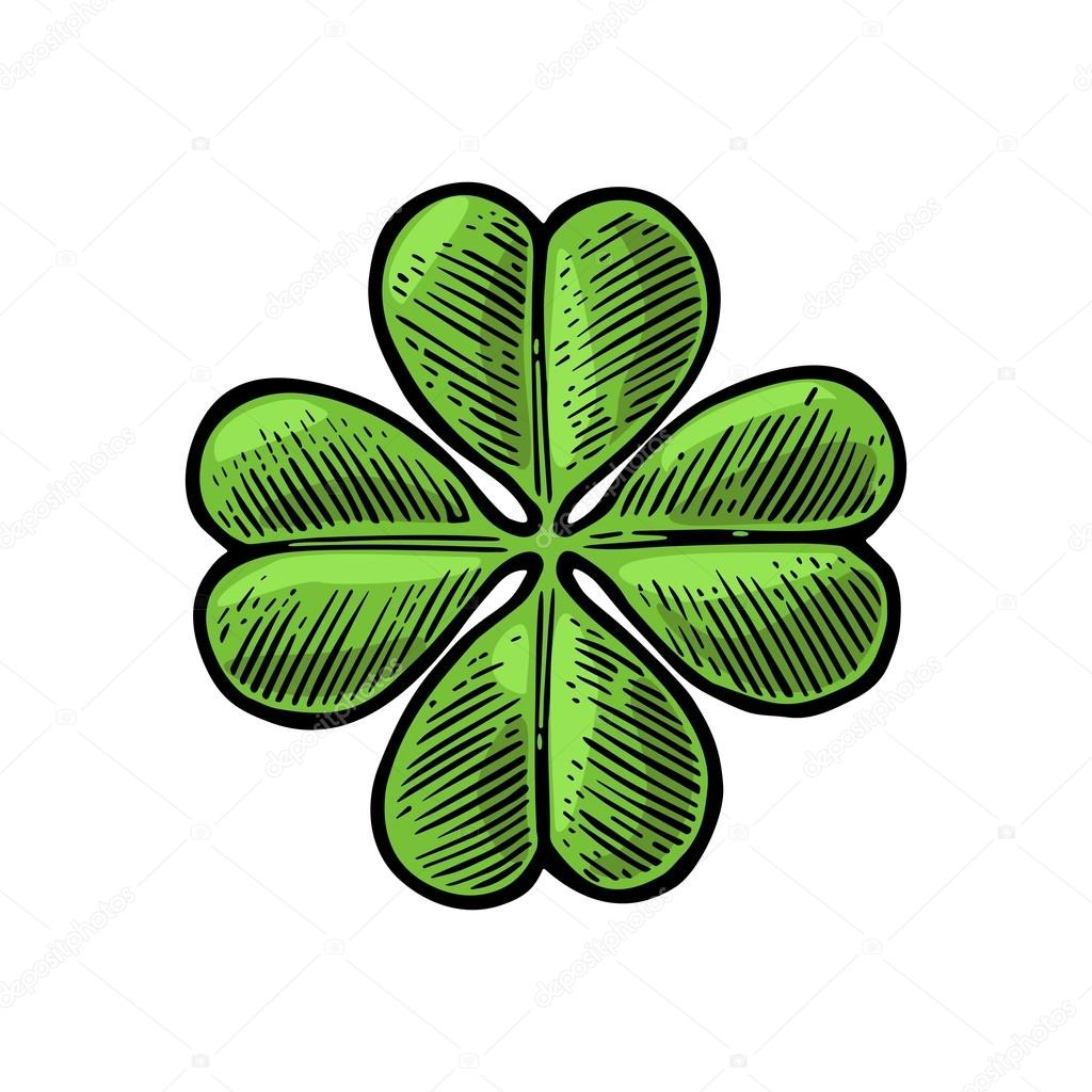 Good luck four leaf clover. Vintage vector engraving illustration for info graphic, poster, web. Black on white background