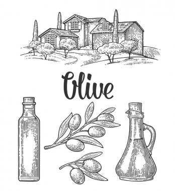 Set olive. Bottle and Jug glass of liquid with cork stopper and branch with leaves. Rural landscape with villa or farm with field, tree and cypress. Vector vintage engraving on white background. stock vector