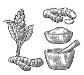 Turmeric root, powder and flower with pestle and mortar.