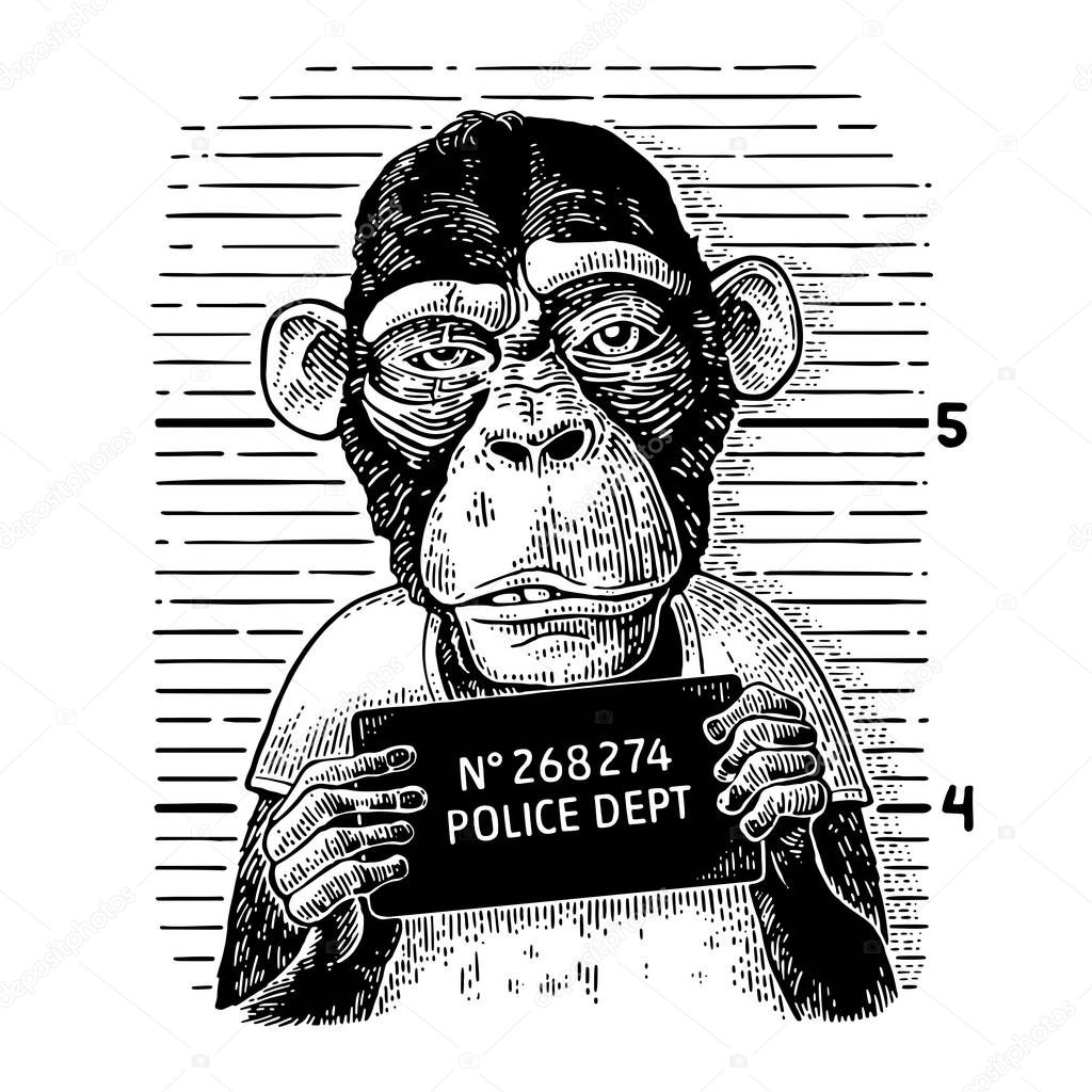 Monkeys in a T-shirt holding a police department banner