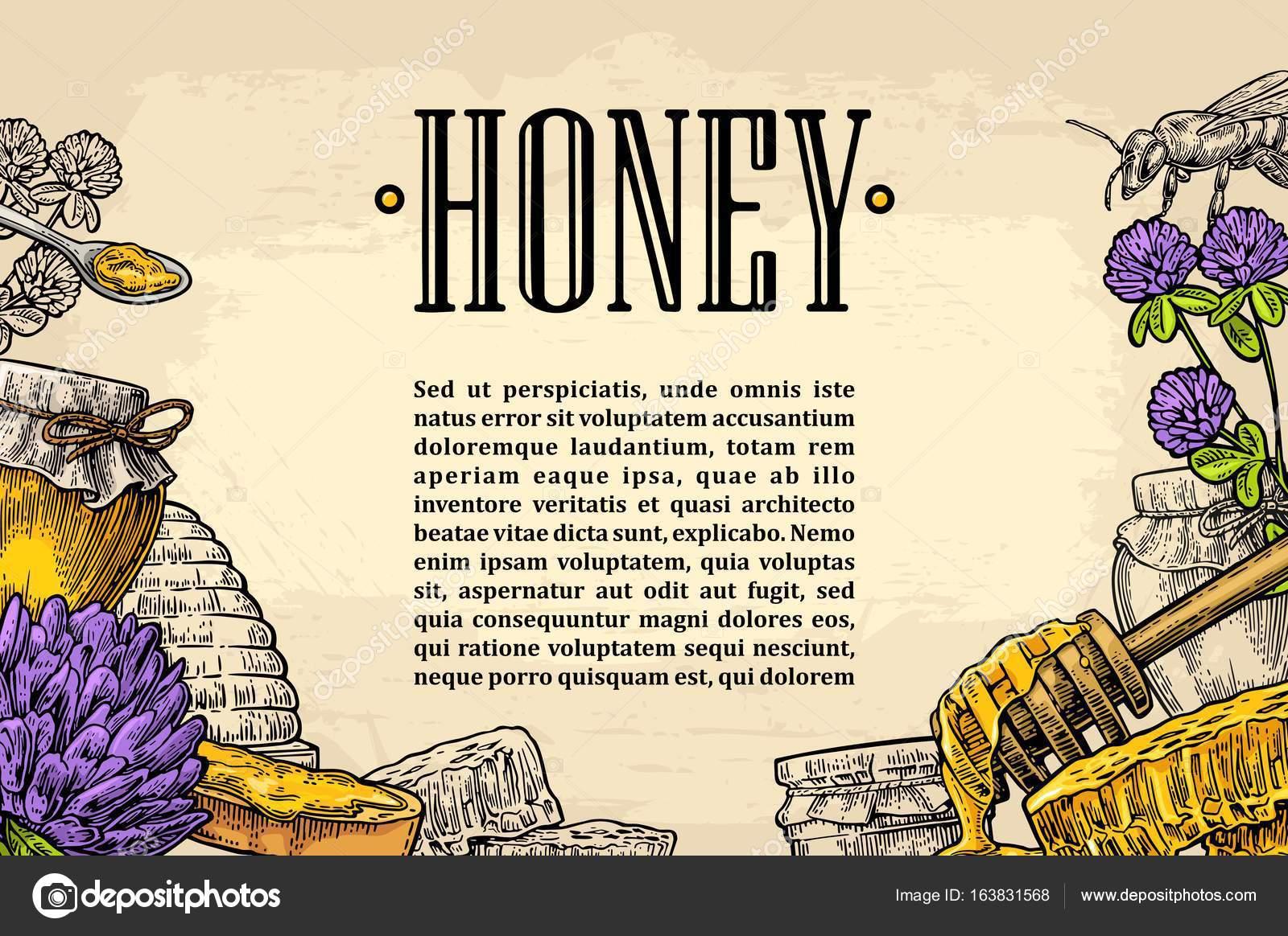 Vorlage-Werbung mit Honig, Waben, Glas, Löffel, Biene — Stockvektor ...