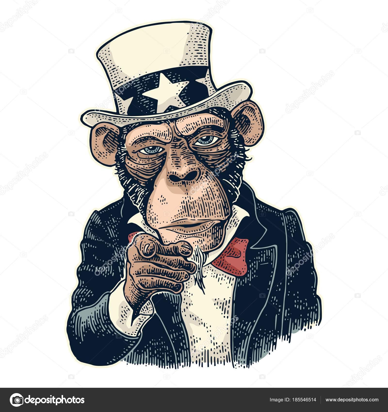 Affe Uncle Sam mit Zeigefinger auf Betrachter. Vintage Gravur ...