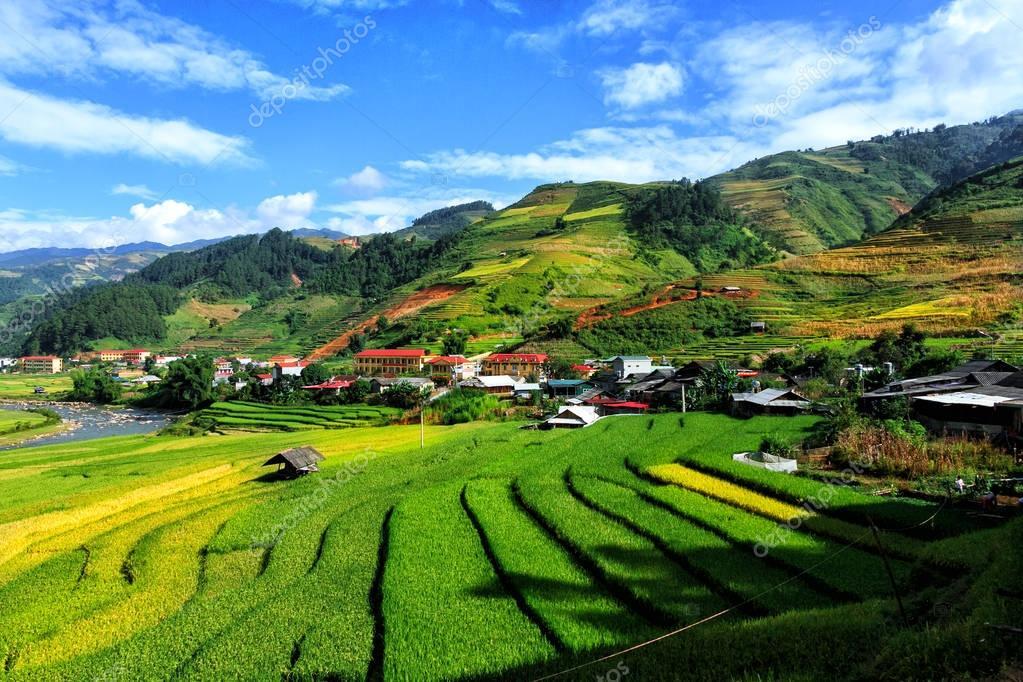 Arrozales En Terrazas De Mu Cang Hai Yenbai Vietnam