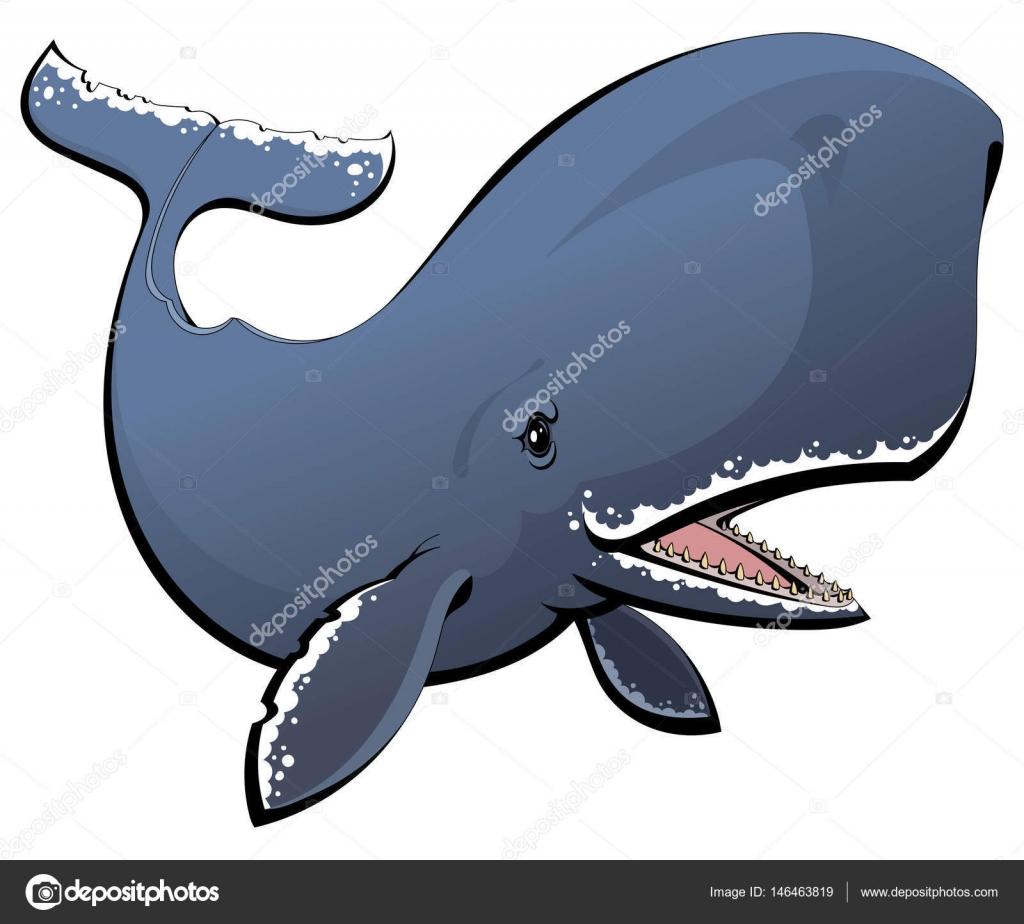 un cachalot de dessin anim baleine dents image vectorielle comsorg 146463819. Black Bedroom Furniture Sets. Home Design Ideas