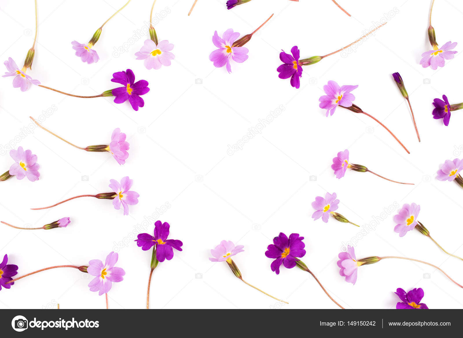 Marco de flores de color púrpura — Foto de stock © Igishevamaria ...