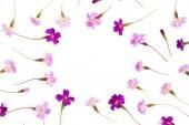 Rám vyrobený z fialové květy