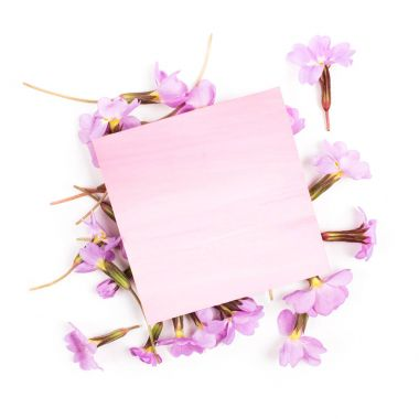 Pink  empty  card and flowers