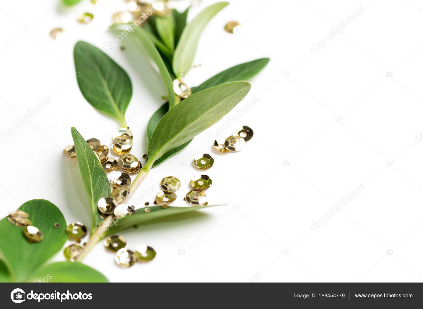 Branch Green Leaves Ang Golden Sequins Isolated White Copy