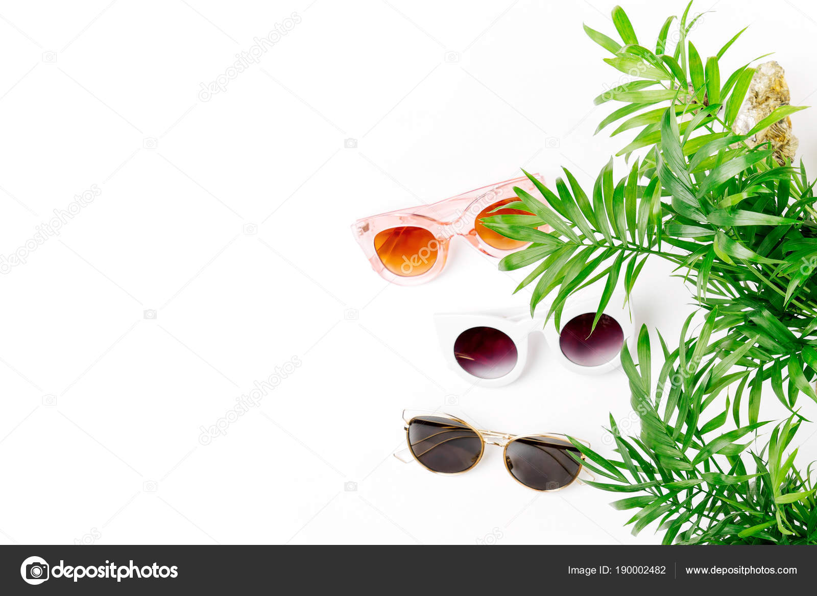 Tropical Leaves Different Types Sunglasses Isolated White Background Stock Photo C Igishevamaria 190002482 Deep dark purple leaves with a contrasting cream edge make this cordyline a colourful and vibrant addition to any tropical garden. depositphotos